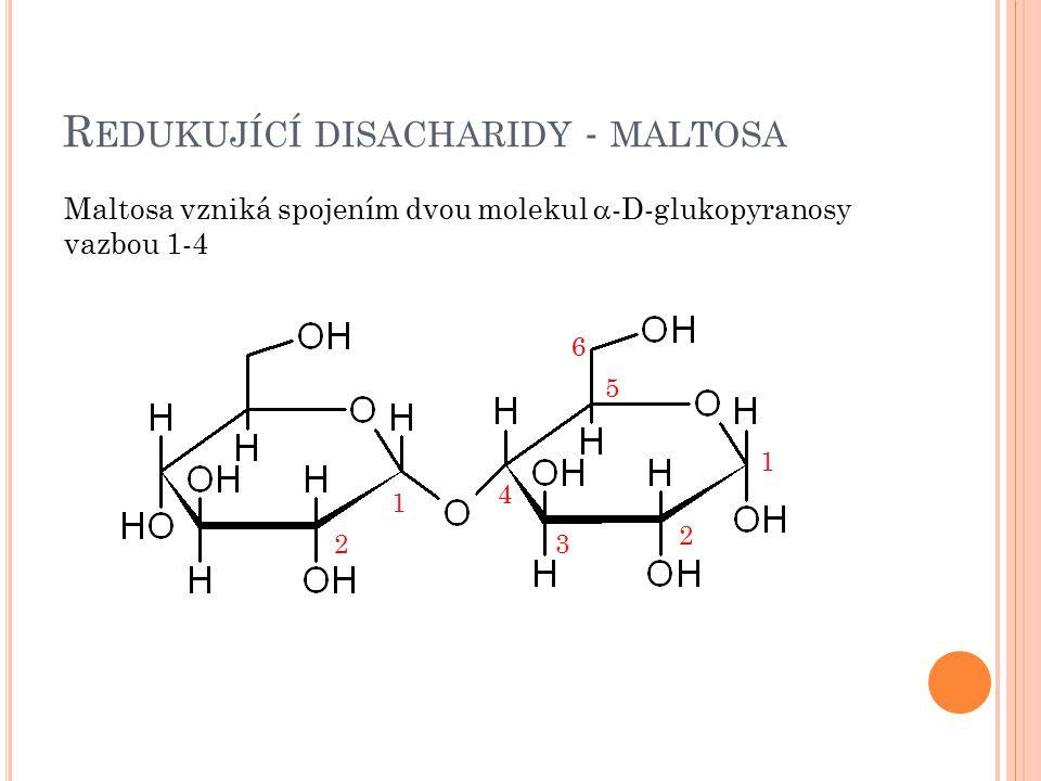 Redukující disacharidy - maltosa