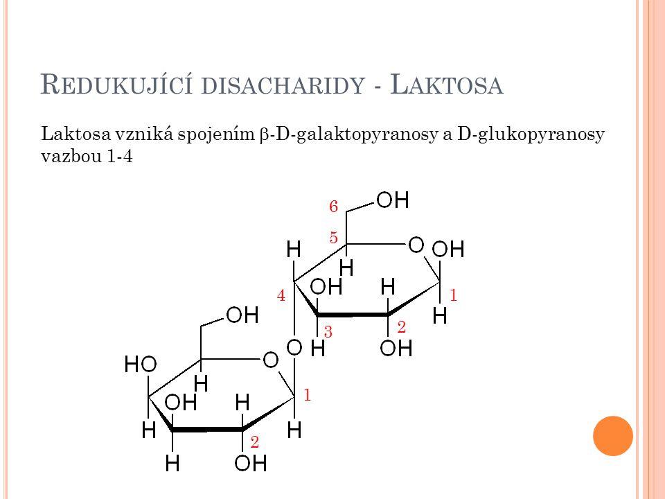 Redukující disacharidy - Laktosa