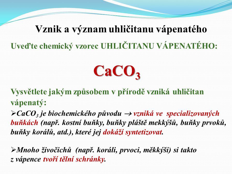 Vznik a význam uhličitanu vápenatého