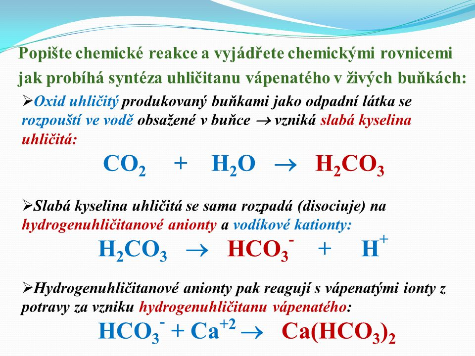CO2 + H2O  H2CO3 H2CO3  HCO3- + H+ HCO3- + Ca+2  Ca(HCO3)2