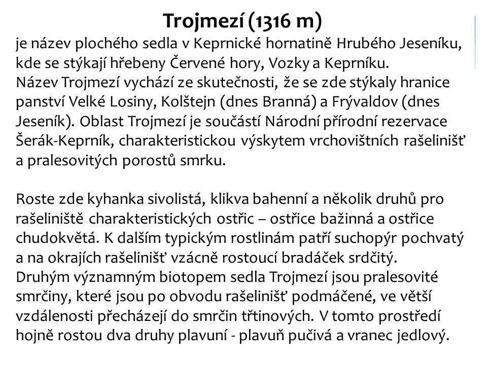 Trojmezí (1316 m) je název plochého sedla v Keprnické hornatině Hrubého Jeseníku, kde se stýkají hřebeny Červené hory, Vozky a Keprníku.