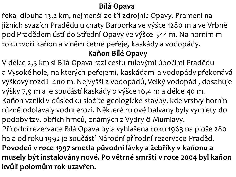Bílá Opava