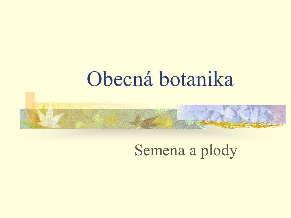 Obecná botanika Semena a plody