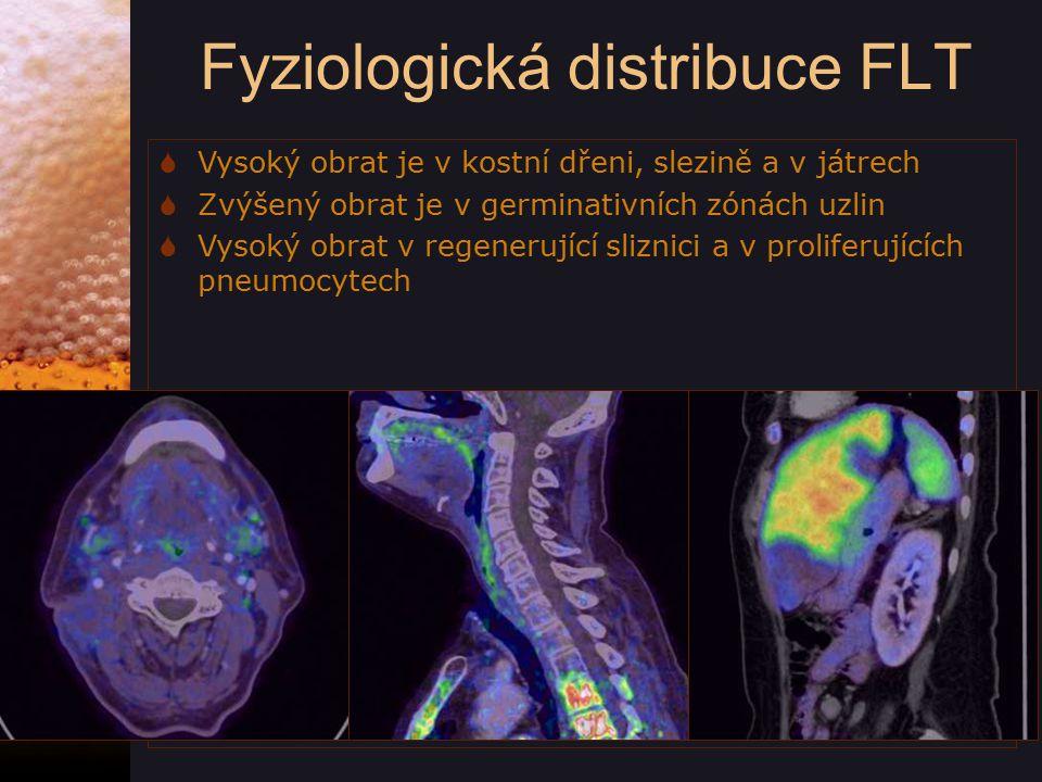 Fyziologická distribuce FLT