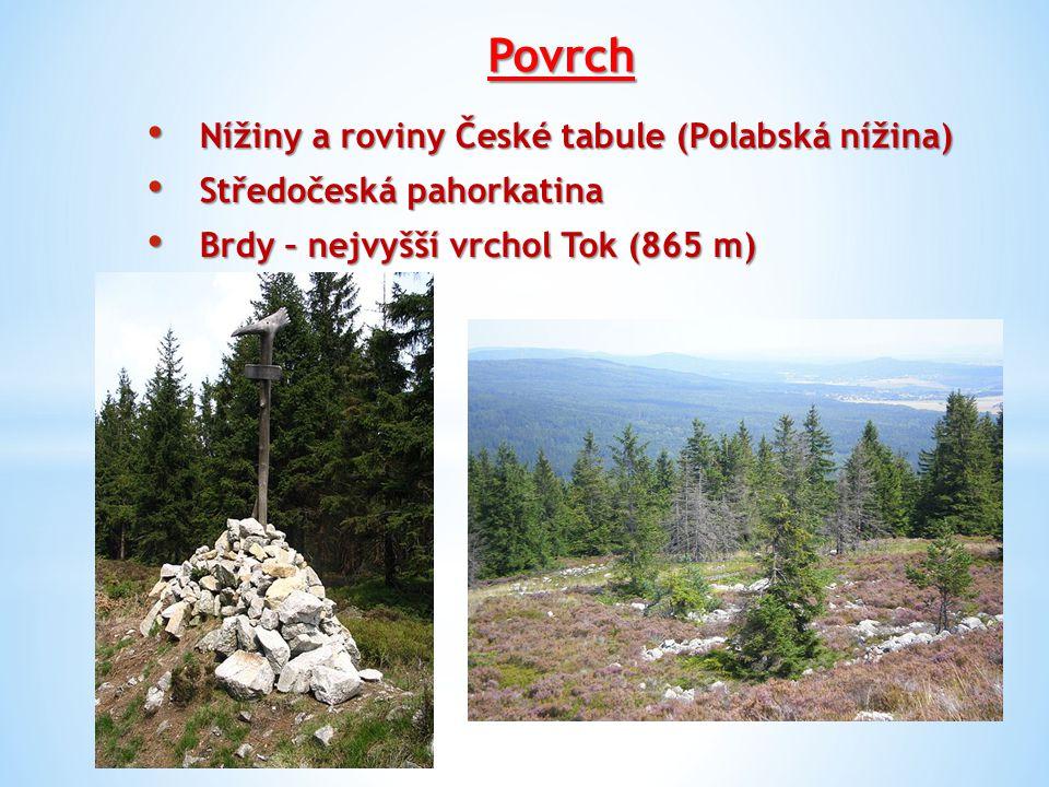 Povrch Nížiny a roviny České tabule (Polabská nížina)