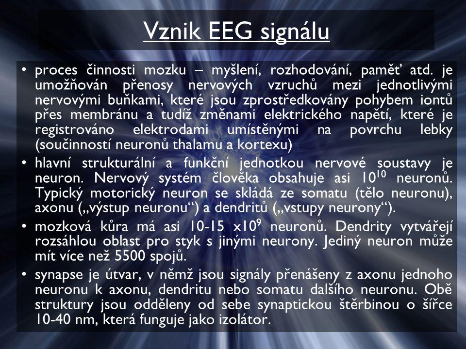 Vznik EEG signálu
