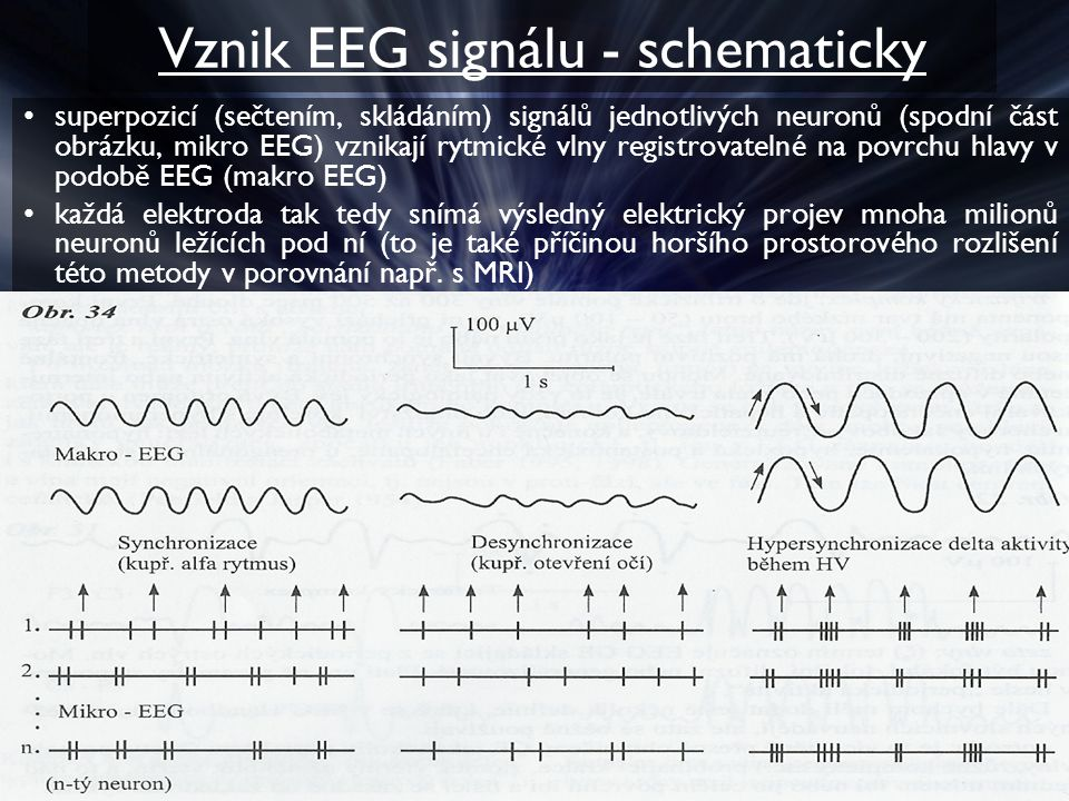 Vznik EEG signálu - schematicky