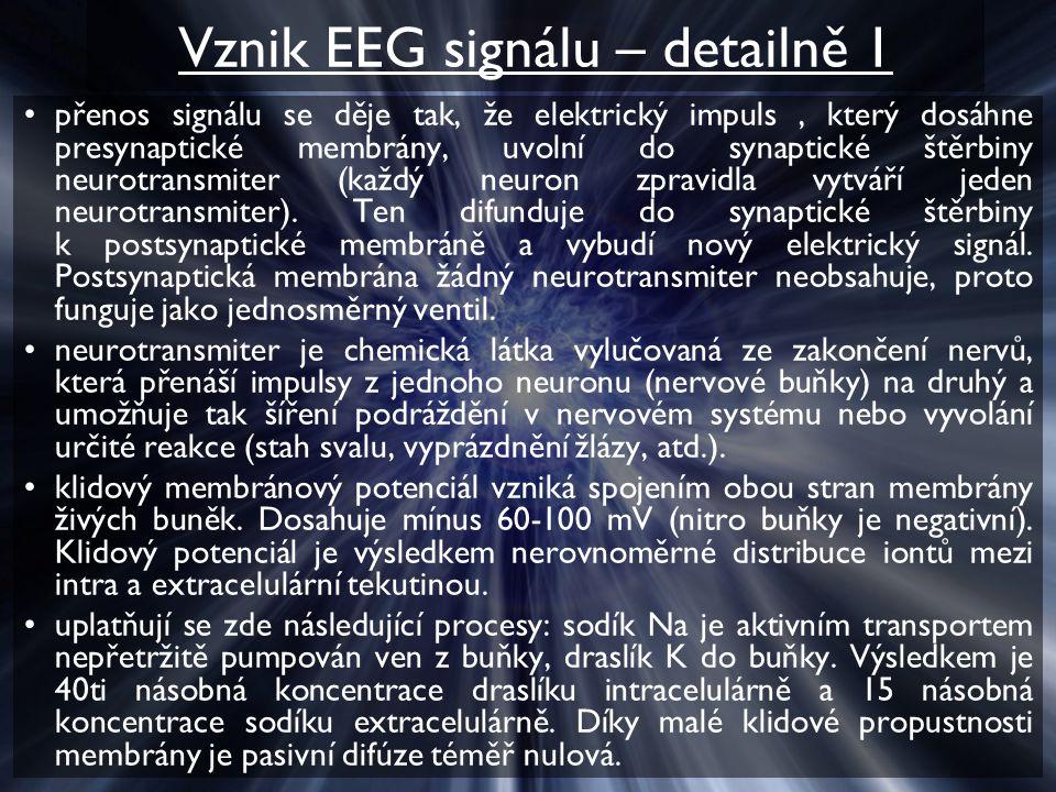 Vznik EEG signálu – detailně 1