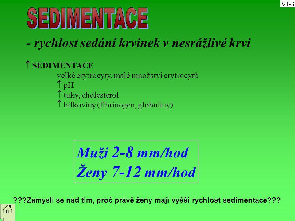 SEDIMENTACE Muži 2-8 mm/hod Ženy 7-12 mm/hod