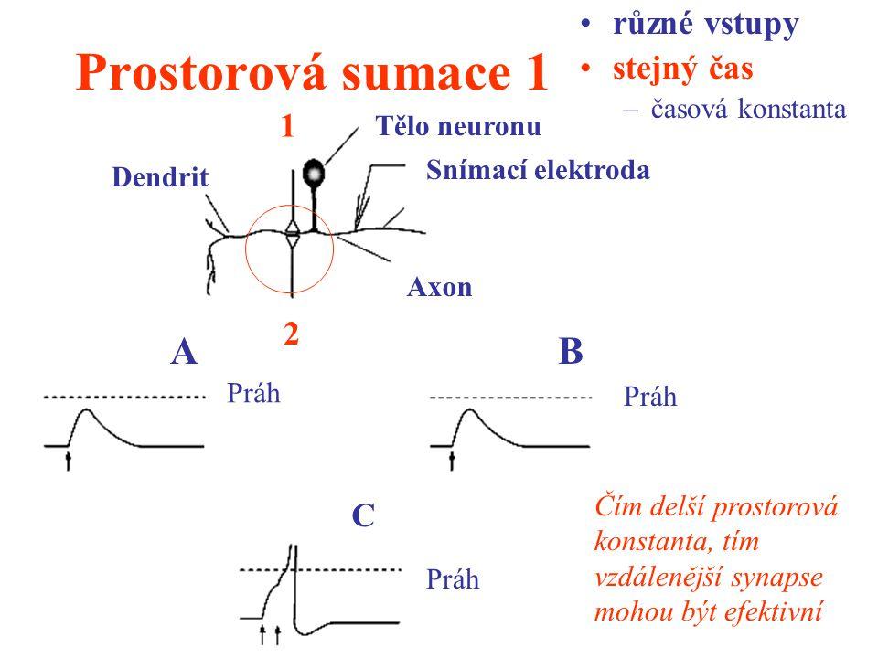 Prostorová sumace 1 A B různé vstupy stejný čas 1 2 C časová konstanta