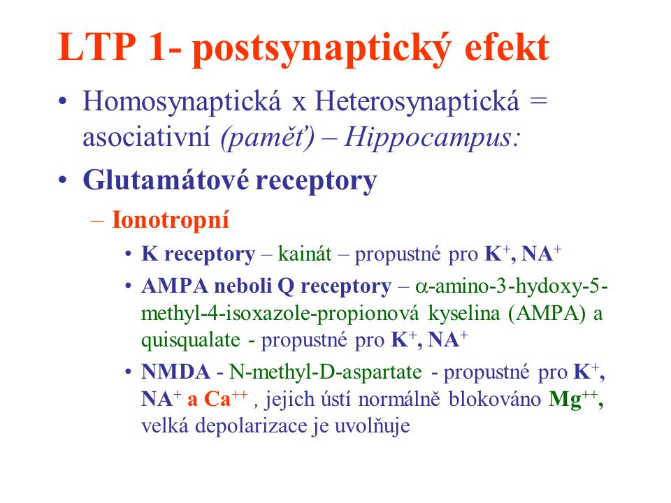 LTP 1- postsynaptický efekt