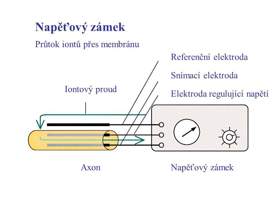 Napěťový zámek Průtok iontů přes membránu Referenční elektroda