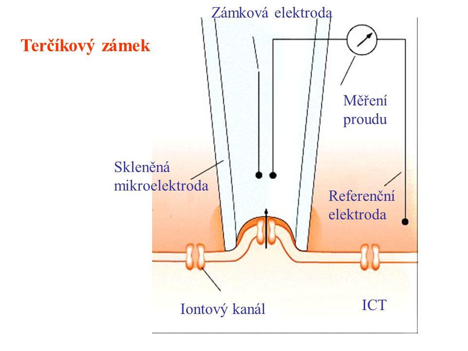 Terčíkový zámek Zámková elektroda Měření proudu