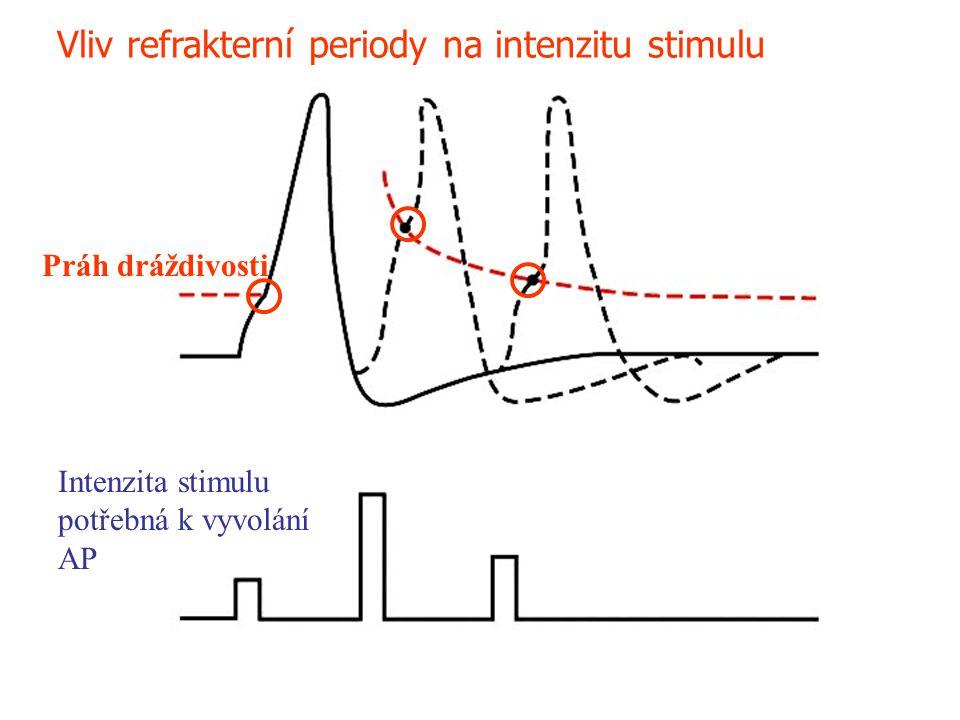 Vliv refrakterní periody na intenzitu stimulu