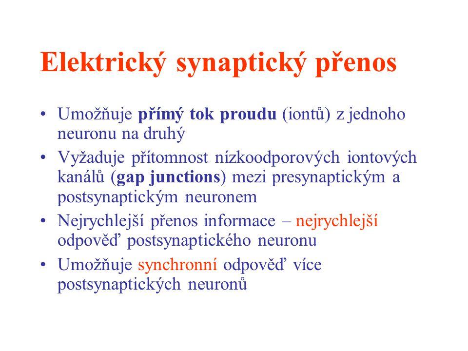 Elektrický synaptický přenos