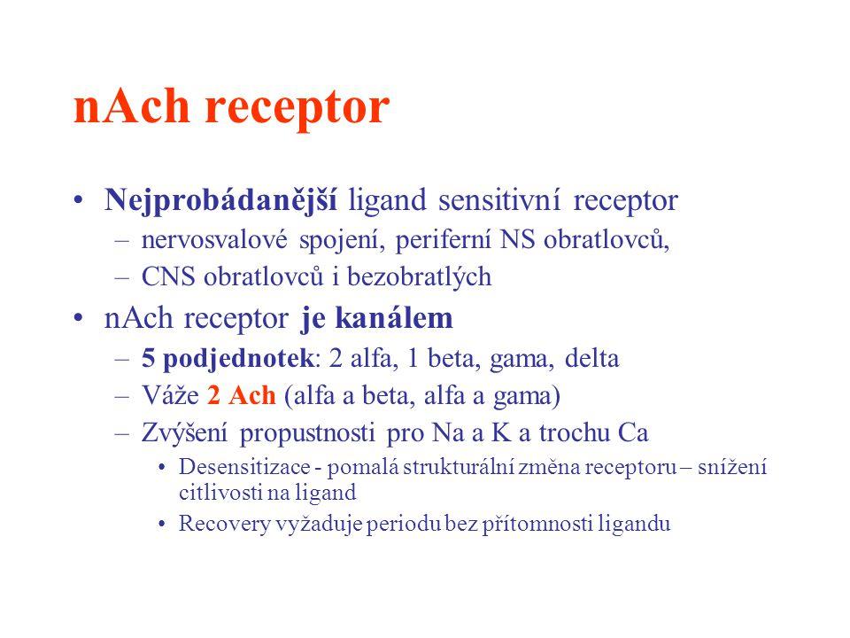 nAch receptor Nejprobádanější ligand sensitivní receptor