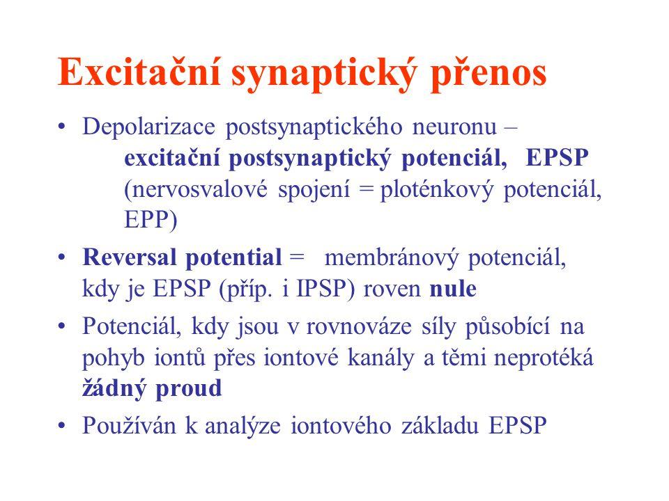 Excitační synaptický přenos