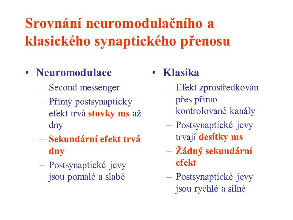 Srovnání neuromodulačního a klasického synaptického přenosu