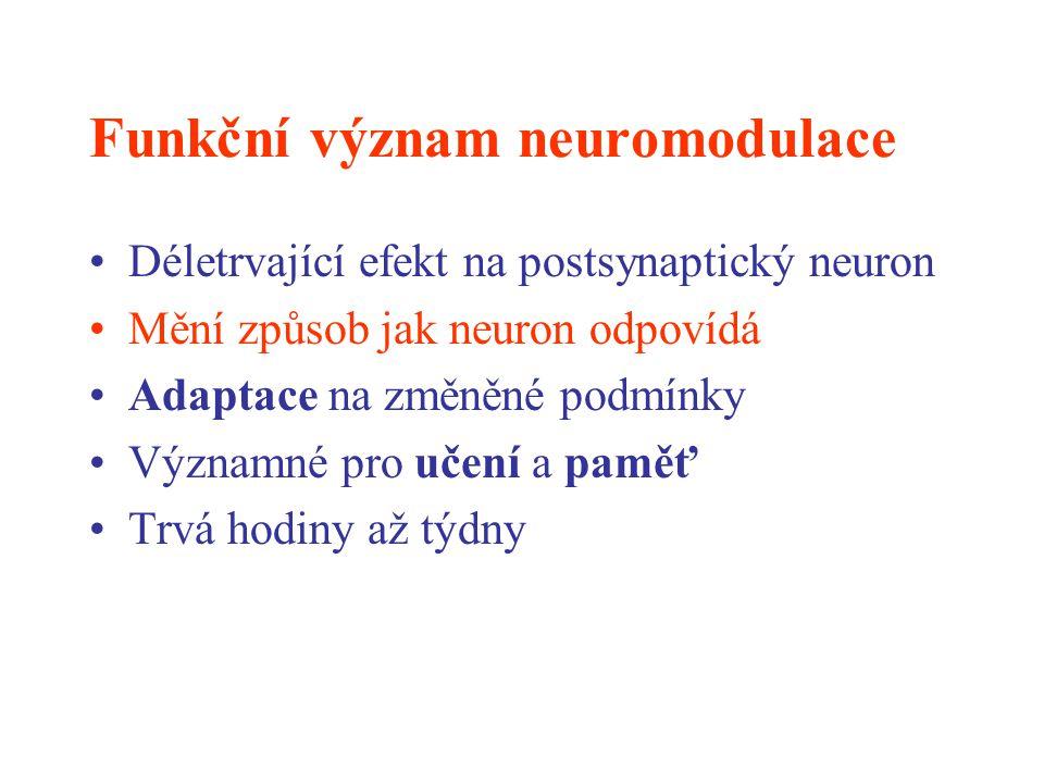 Funkční význam neuromodulace