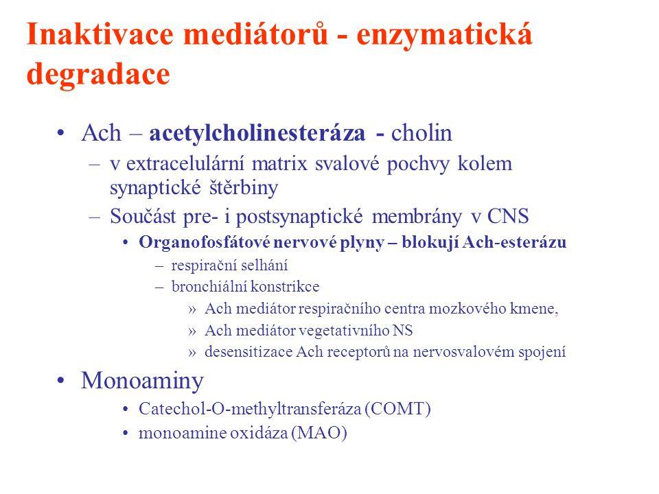 Inaktivace mediátorů - enzymatická degradace