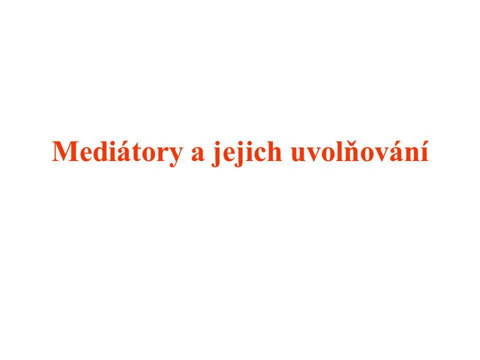 Mediátory a jejich uvolňování