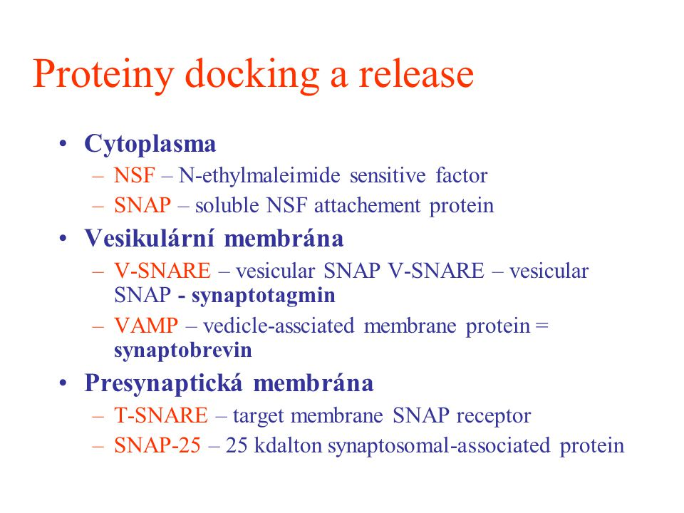 Proteiny docking a release