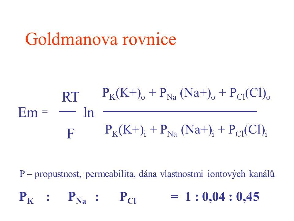 Goldmanova rovnice Em RT F ln PK(K+)o + PNa (Na+)o + PCl(Cl)o