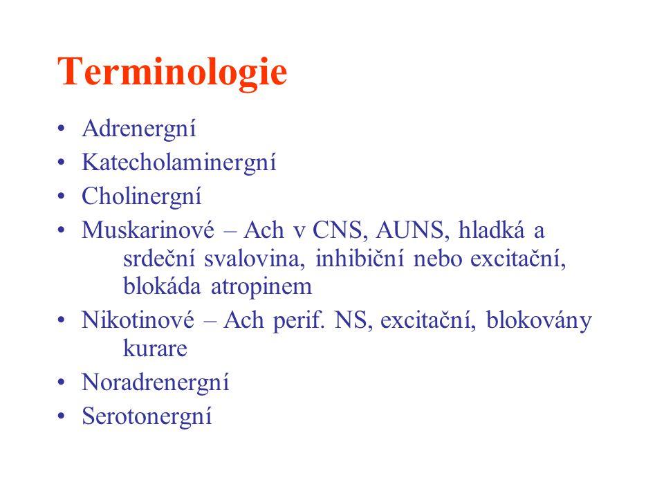 Terminologie Adrenergní Katecholaminergní Cholinergní