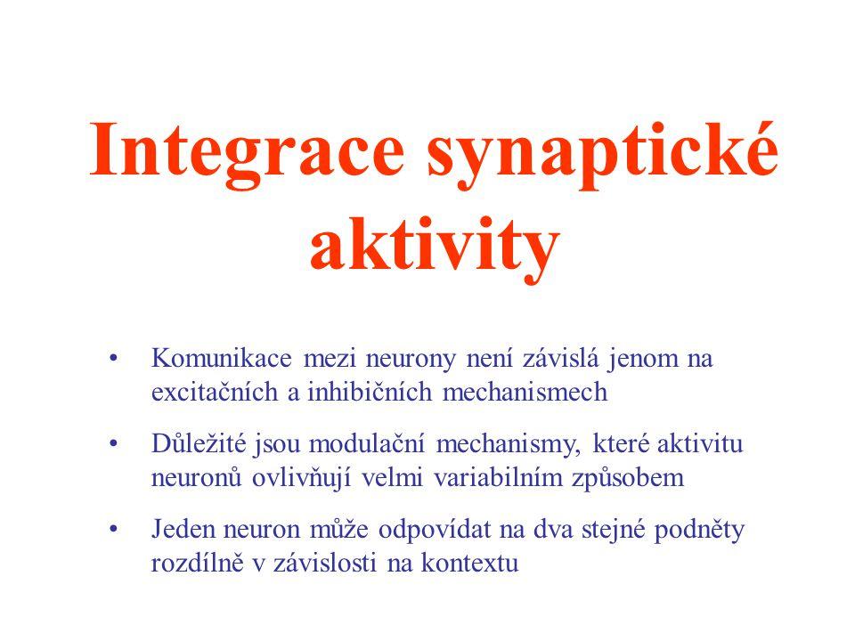 Integrace synaptické aktivity