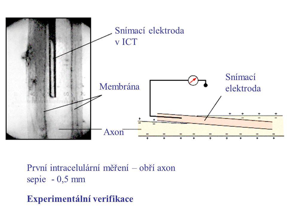 Snímací elektroda v ICT