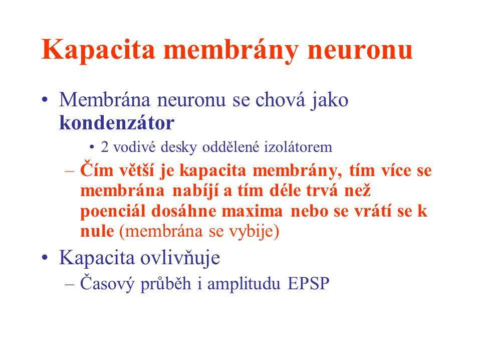Kapacita membrány neuronu