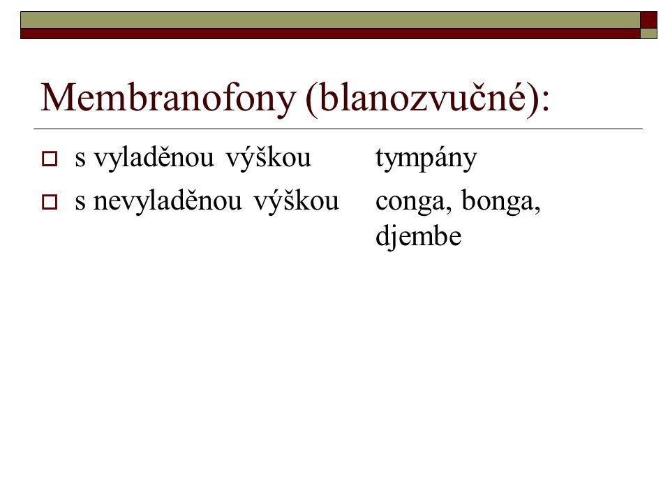 Membranofony (blanozvučné):
