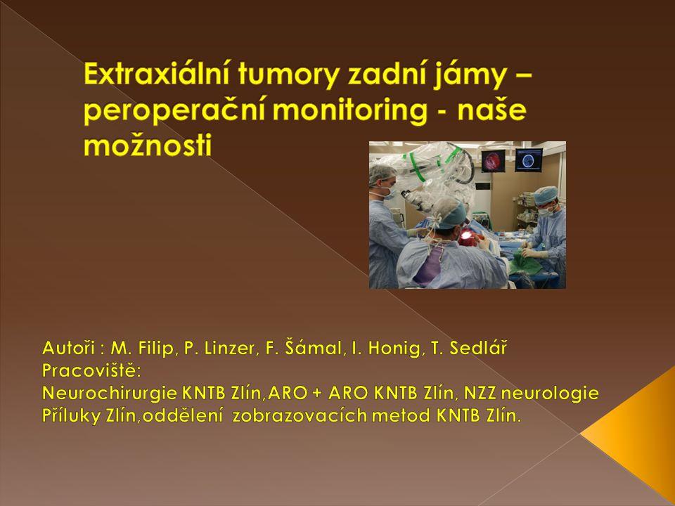 Extraxiální tumory zadní jámy – peroperační monitoring - naše možnosti