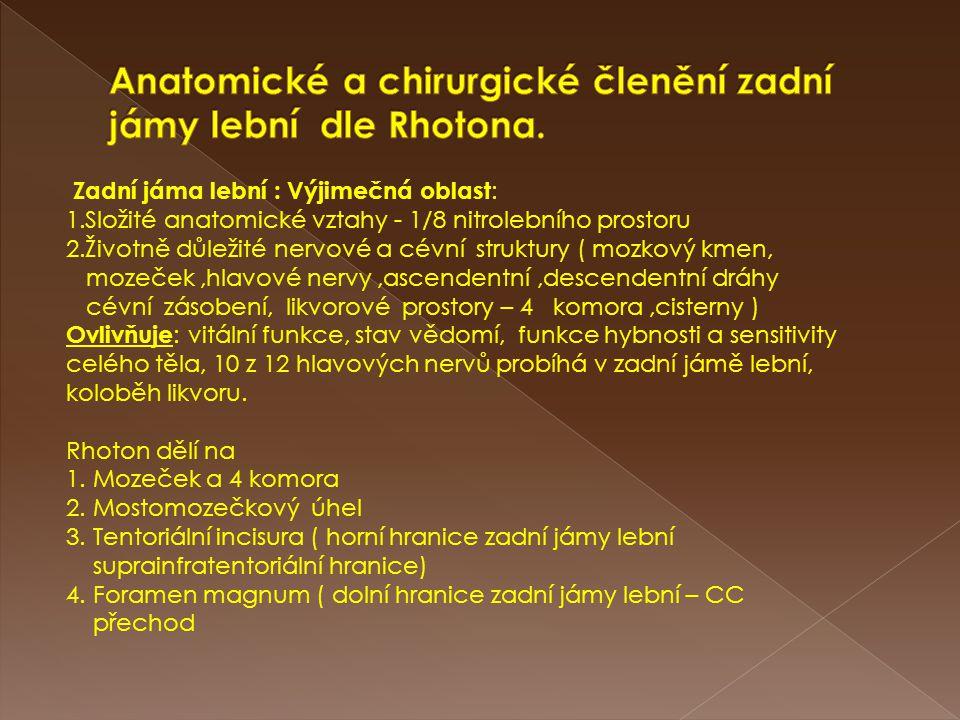 Anatomické a chirurgické členění zadní jámy lební dle Rhotona.