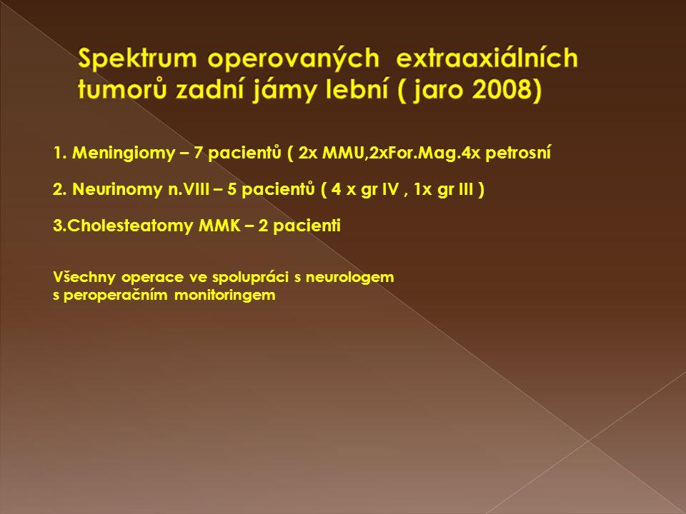 Spektrum operovaných extraaxiálních tumorů zadní jámy lební ( jaro 2008)