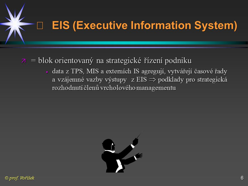 ¨ EIS (Executive Information System)
