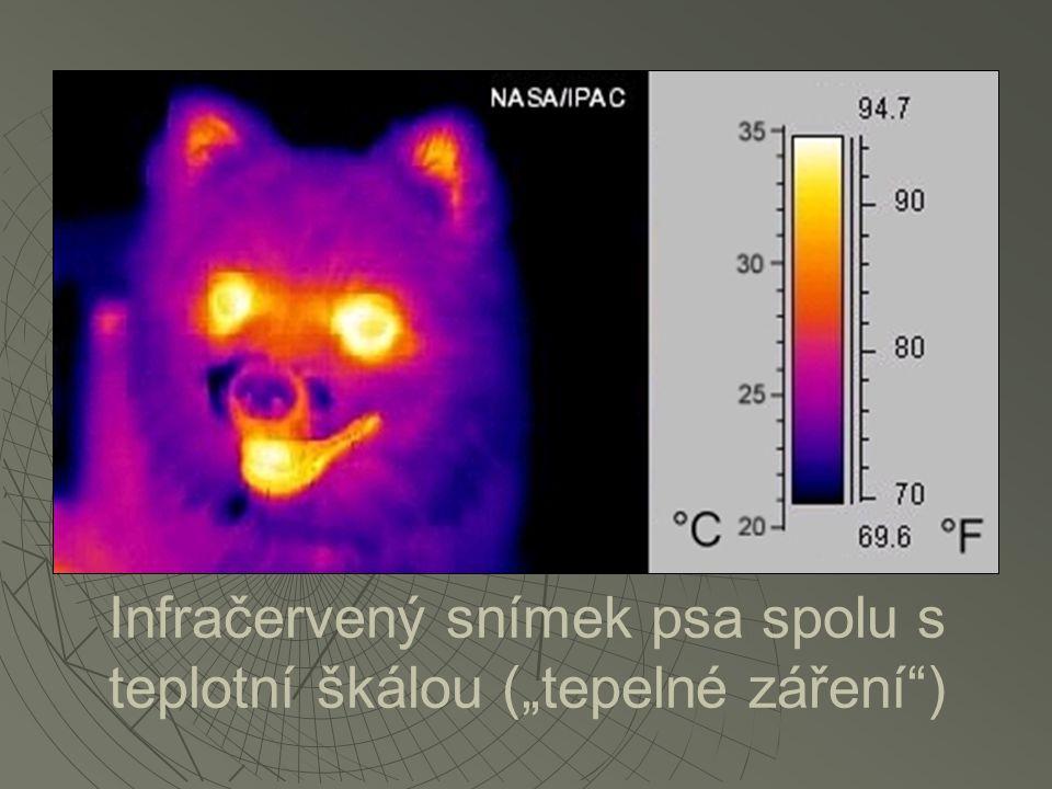 """Infračervený snímek psa spolu s teplotní škálou (""""tepelné záření )"""