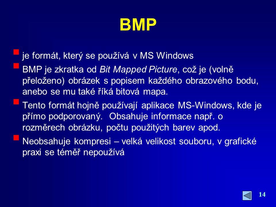 BMP je formát, který se používá v MS Windows