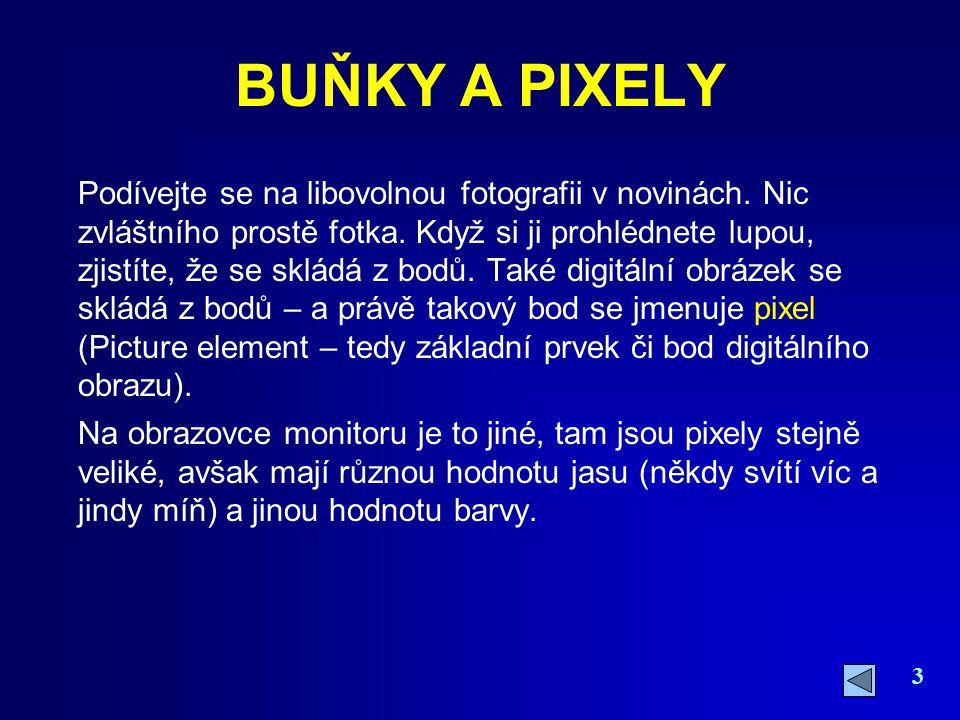 BUŇKY A PIXELY
