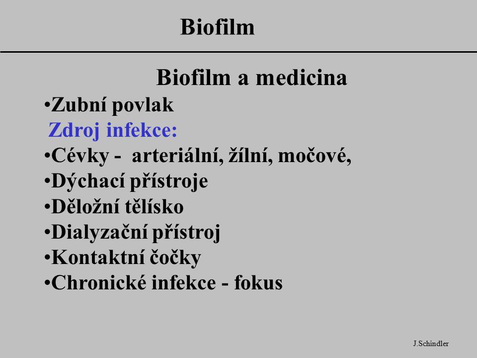 Biofilm Biofilm a medicina Zubní povlak Zdroj infekce: