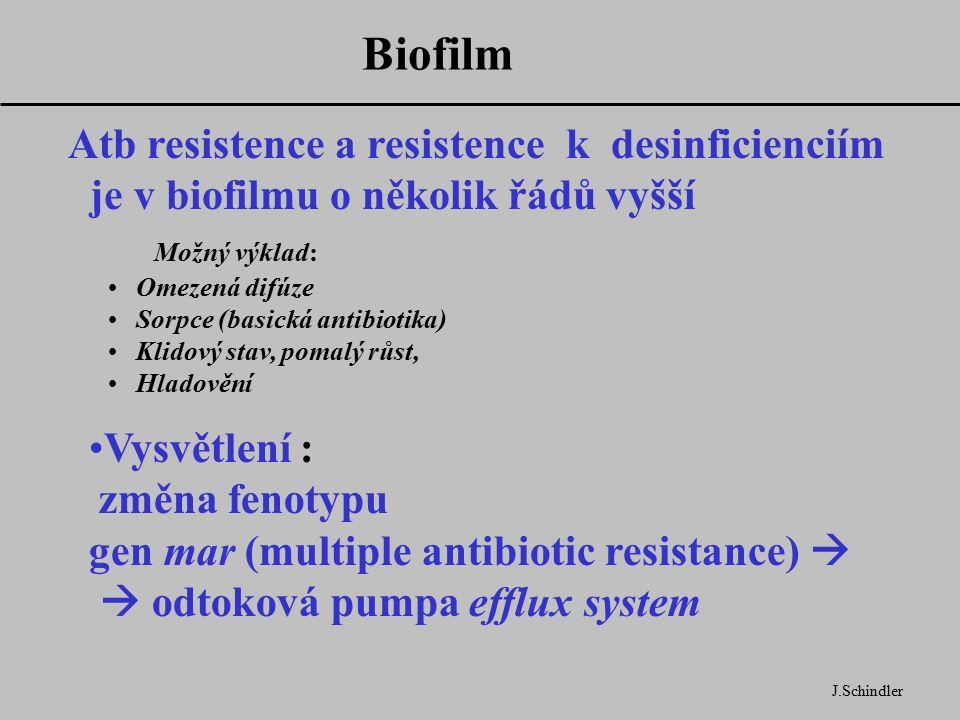 Biofilm Atb resistence a resistence k desinficienciím je v biofilmu o několik řádů vyšší Možný výklad: