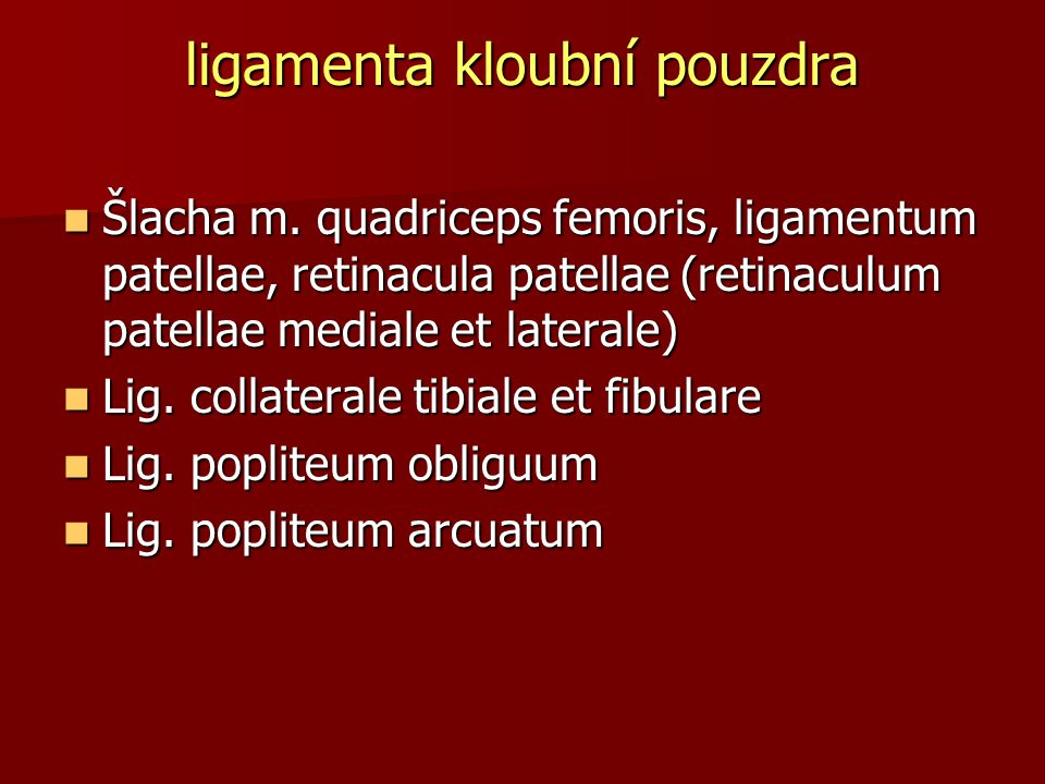 ligamenta kloubní pouzdra