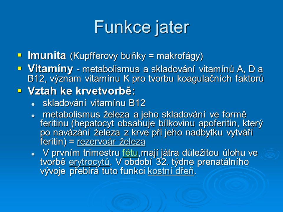 Funkce jater Imunita (Kupfferovy buňky = makrofágy)