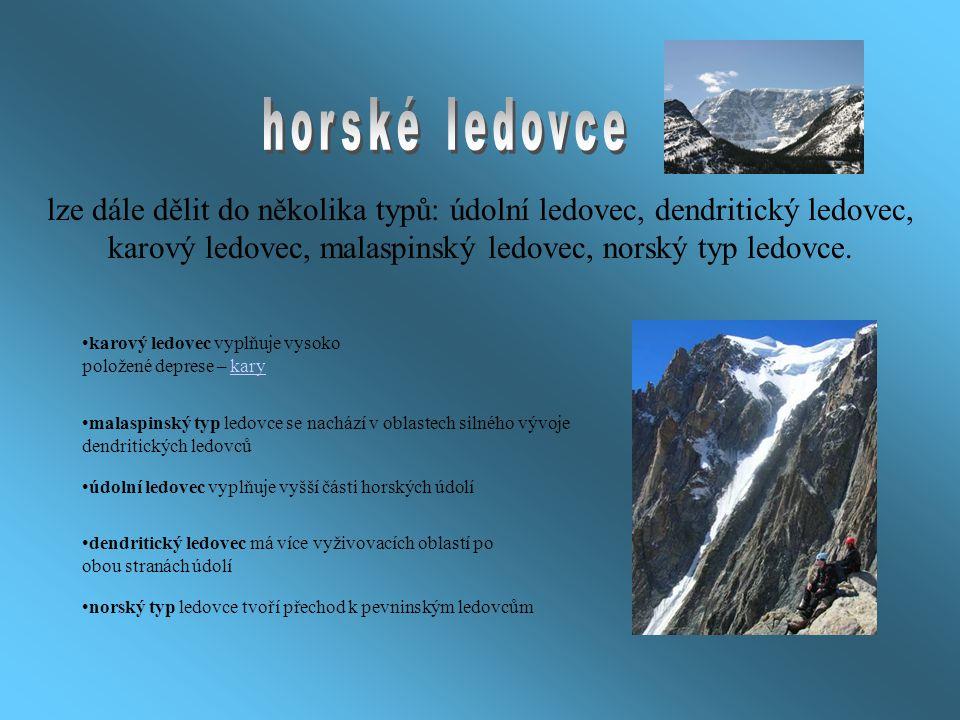 horské ledovce lze dále dělit do několika typů: údolní ledovec, dendritický ledovec, karový ledovec, malaspinský ledovec, norský typ ledovce.