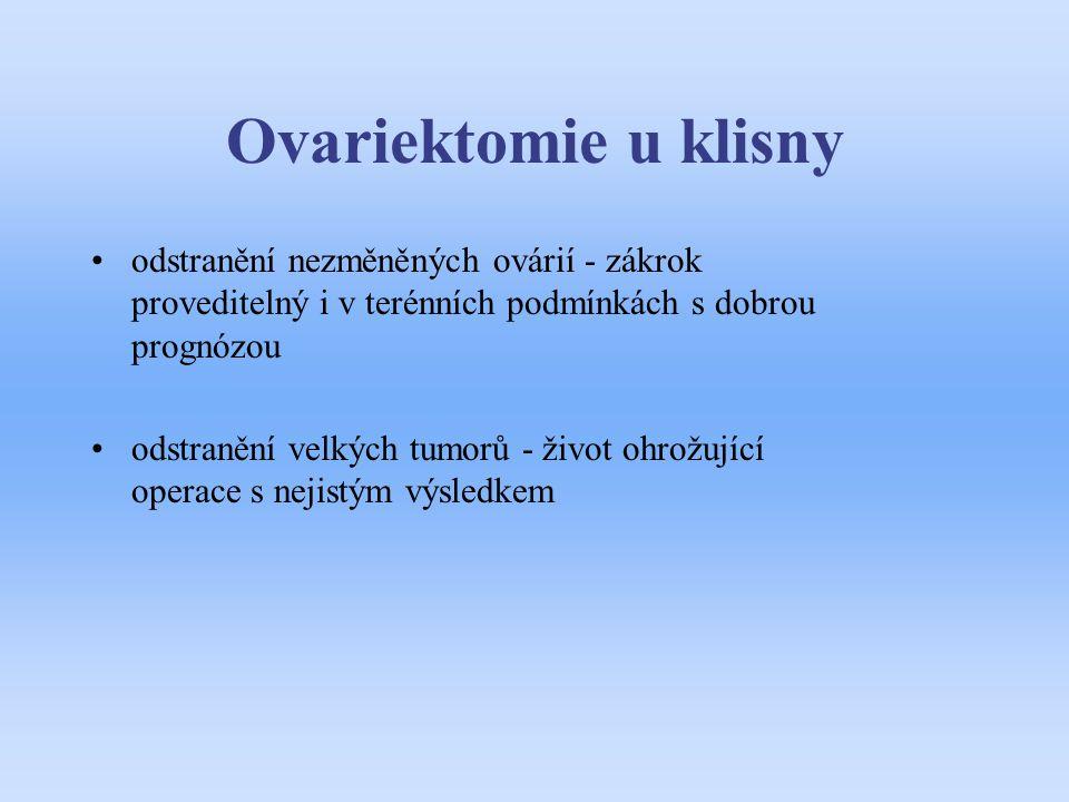 Ovariektomie u klisny odstranění nezměněných ovárií - zákrok proveditelný i v terénních podmínkách s dobrou prognózou.