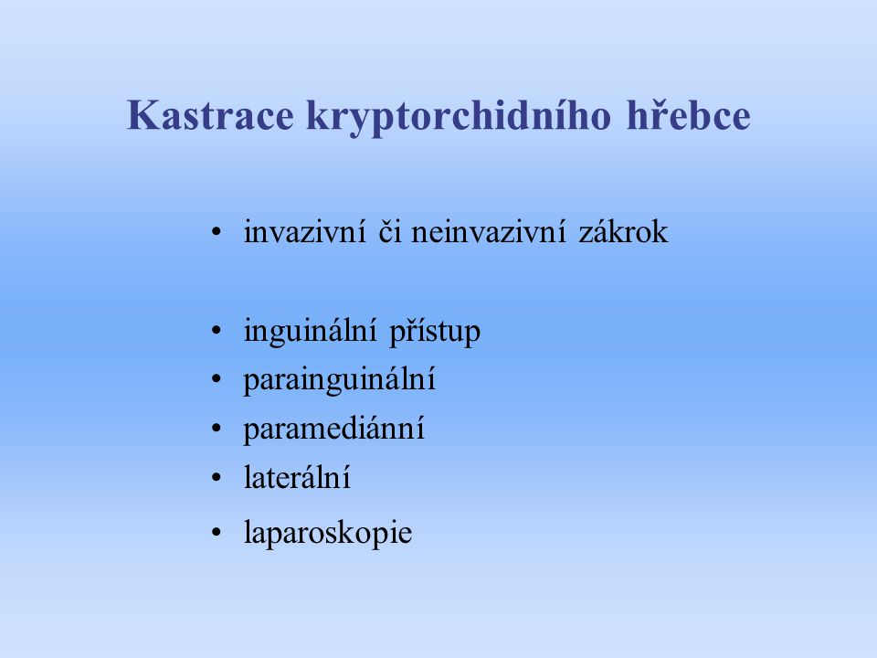 Kastrace kryptorchidního hřebce