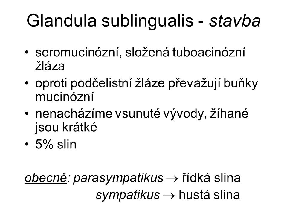 Glandula sublingualis - stavba