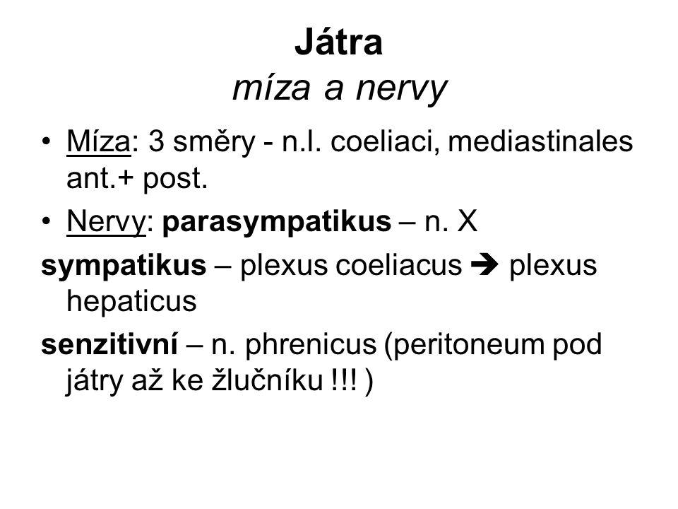 Játra míza a nervy Míza: 3 směry - n.l. coeliaci, mediastinales ant.+ post. Nervy: parasympatikus – n. X.