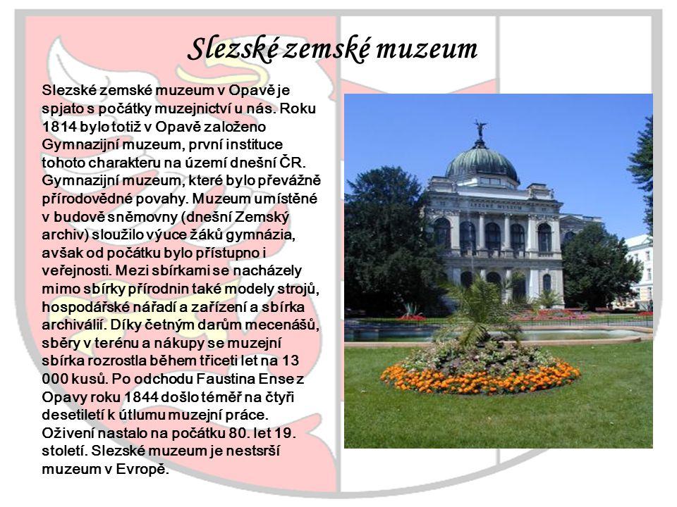 Slezské zemské muzeum