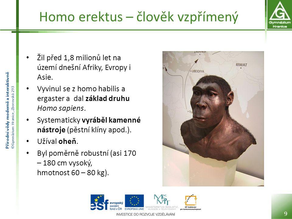 Homo erektus – člověk vzpřímený